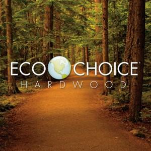 EcoChoiceSquare