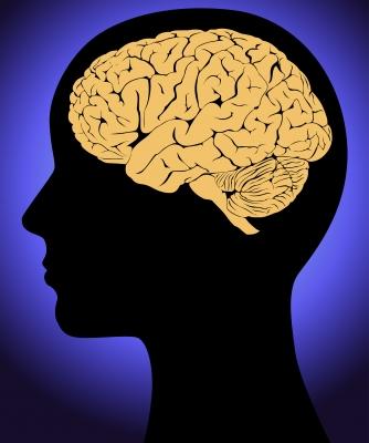 Brain-fdp-smokedsalmon