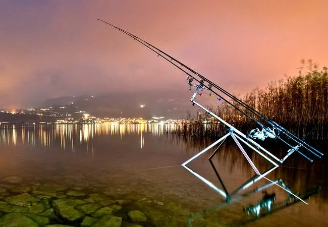 Carp Rod Guide 2019 (Blanks, Rod Guides, Test Curves)