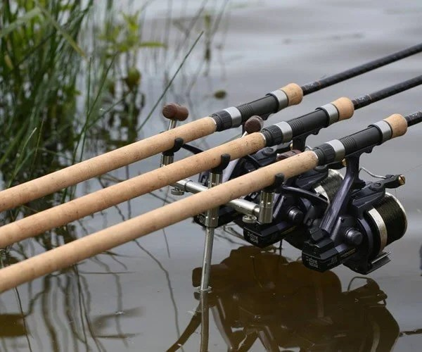 Choosing A Carp Rod