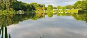 The Millpond Carp Fishing