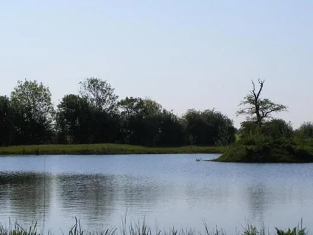 Coole Acres Fishery