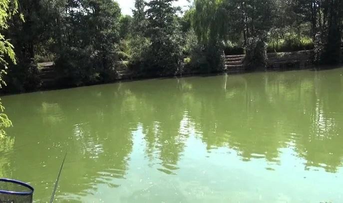 Court Farm Lakes