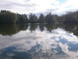 <span class=hpt_headertitle>Best Digital Fishing Scales (Top 6 Carp Scales)</span>