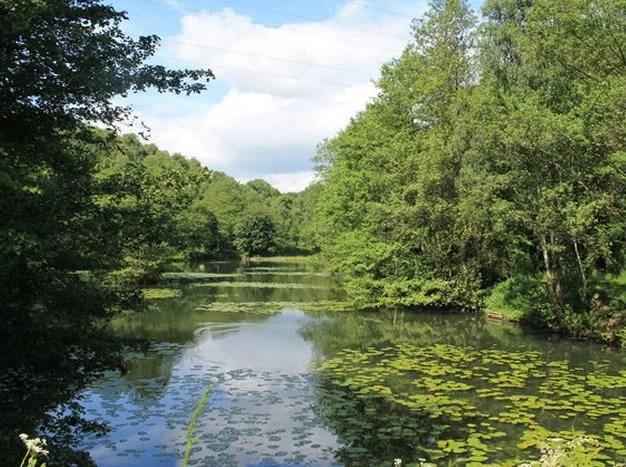 Ravenfield Ponds