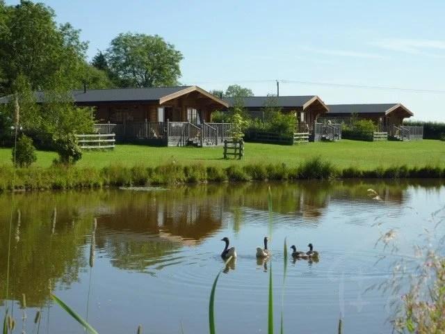 Stretton Lakes