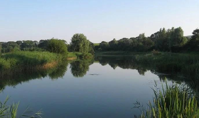 Swanborough Fishing Lakes