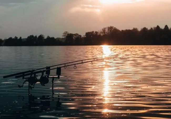 8 Best Carp Rods 2019 (Budget, Stalking, Buyers Guide)
