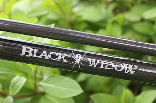 Best Daiwa Carp Rod