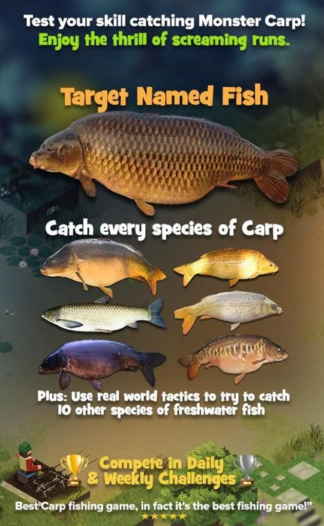 Carpcraft Fishing App
