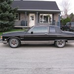 Cedricisaac 1980 Pontiac Parisienne S Photo Gallery At Cardomain