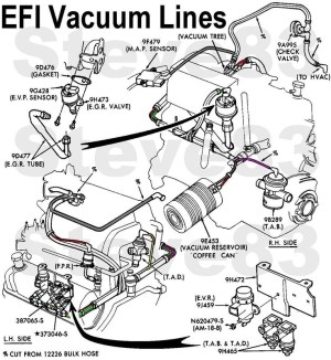 1996 Ford Explorer Engine Diagram | Automotive Parts