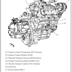 2005 Chevy Equinox Egr Wiring Diagram State Transition Example Library Management System Install 2007 Engine Toyskids Co Auto Electrical Rh Kubota Edu Tiendadiversey Com Ar