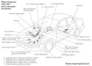 2000 Toyota Corolla Engine Diagram | Automotive Parts