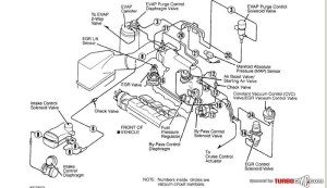 95 Honda Accord Engine Diagram | Automotive Parts Diagram