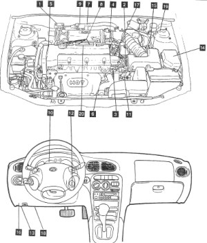 2000 Hyundai Elantra Engine Diagram | Automotive Parts