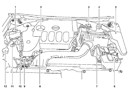 Engine Diagram For Nissan Sentra Questions & Answers (With