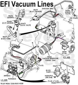 1999 Ford F150 Engine Diagram | Automotive Parts Diagram