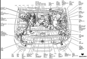 Ford F150 Engine Diagram 1989 | F150 Engine Component Diagram pertaining to 1986 Ford F150