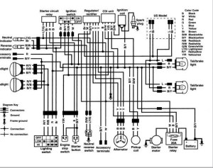 Kawasaki Klf 300 Wiring Diagram | IndexNewsPaperCom