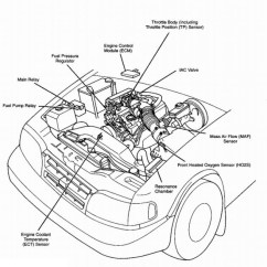 2000 Kia Sportage Wiring Diagram Lotus In Water Plant Engine | Automotive Parts Images