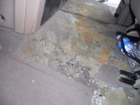 Car Upholstery Mildew Clean   Upcomingcarshq.com