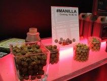 Sticky Baits Manilla