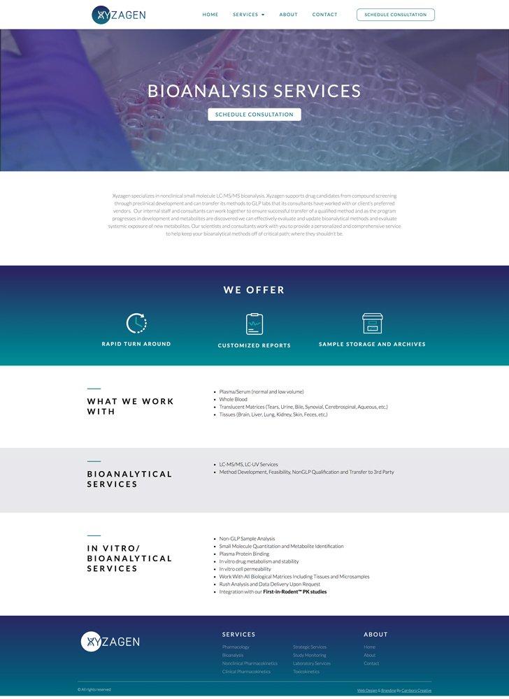 Xyzagne BIoanaysis-services page