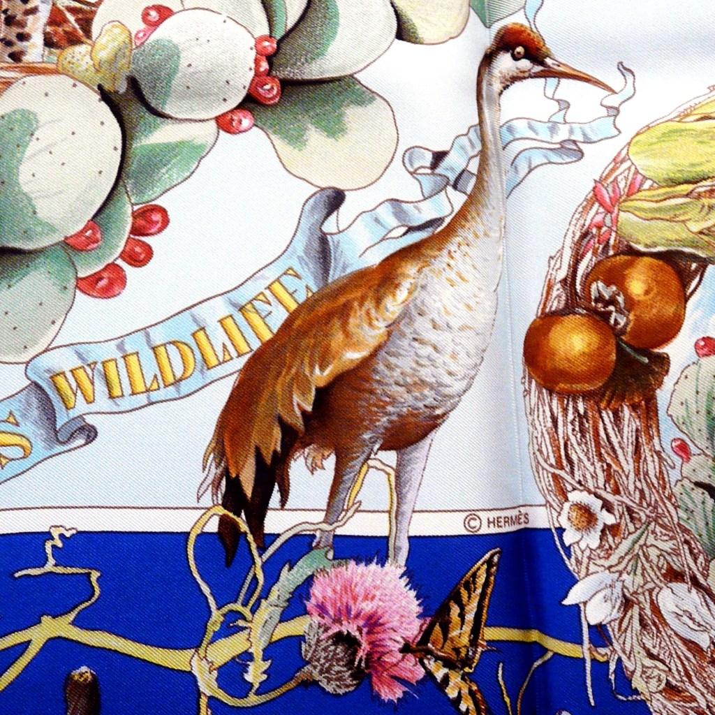 Faune et Flore Du Texas - Texas Wildlife HERMES Silk Scarf copyright