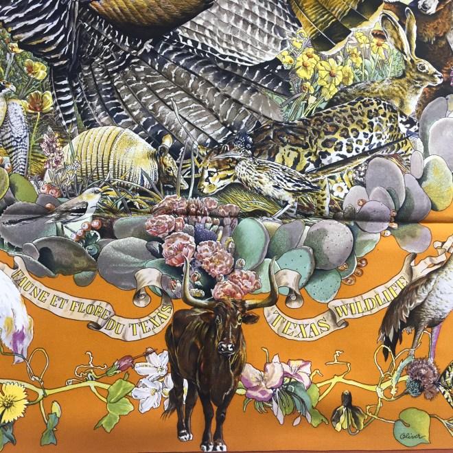 Faune et Flore Du Texas - Texas Wildlife RARE HERMES Silk Scarf (13)