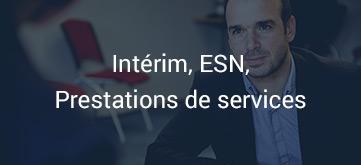 Intérim, ESN, Prestations de services