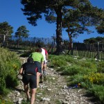 Cross Alpino telégrafo 2012 fotos 4