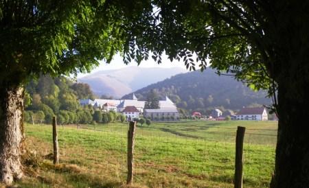 Carreras de Montaña en Navarra: Correr por el monte. Y mucho más...