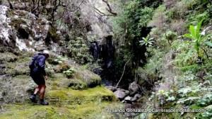 ultra trail portugal madeira island ultra trail 2014 fotos fernando gonzalez (10)