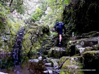 ultra trail portugal madeira island ultra trail 2014 fotos fernando gonzalez (9)