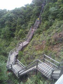 skyrunning lantau 2 peaks 2015 3