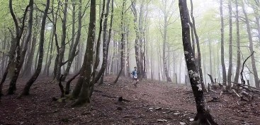 eremua estacion bike y trail pirineo navarro. foto pyrene visuals (3)