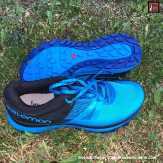 Zapatilla Salomon Trailster 2019 (2)