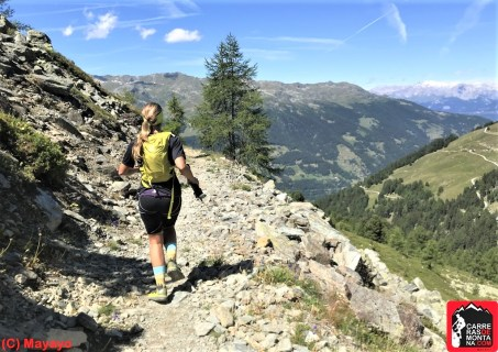 rutas trail running suiza sierre zinal (161) (Copy)