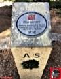 pino de la cadena rutas cercedilla sierra de guadarrama (1)