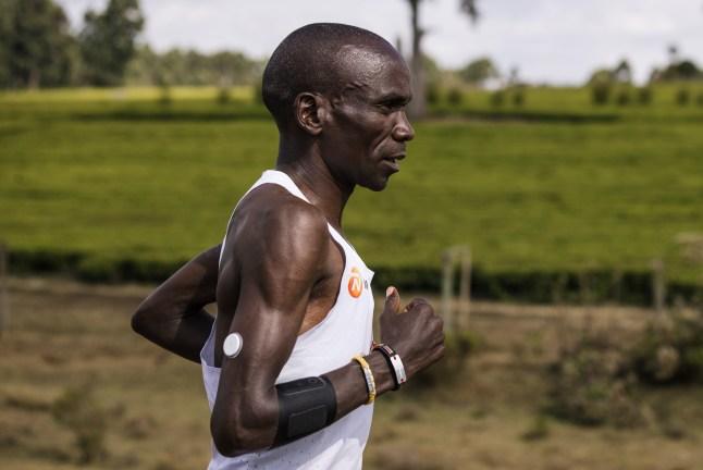 entrenamiento maraton kipchoge glucosa abbot (2)