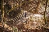 100 millas pr donde camina el oso fotos ruben fueyo (15)