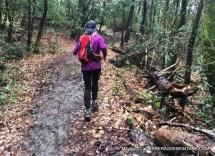 firenze urban trail 2016 fotos mayayo (111)