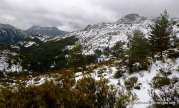 zetas pedriza rutas trail running madrid (32)