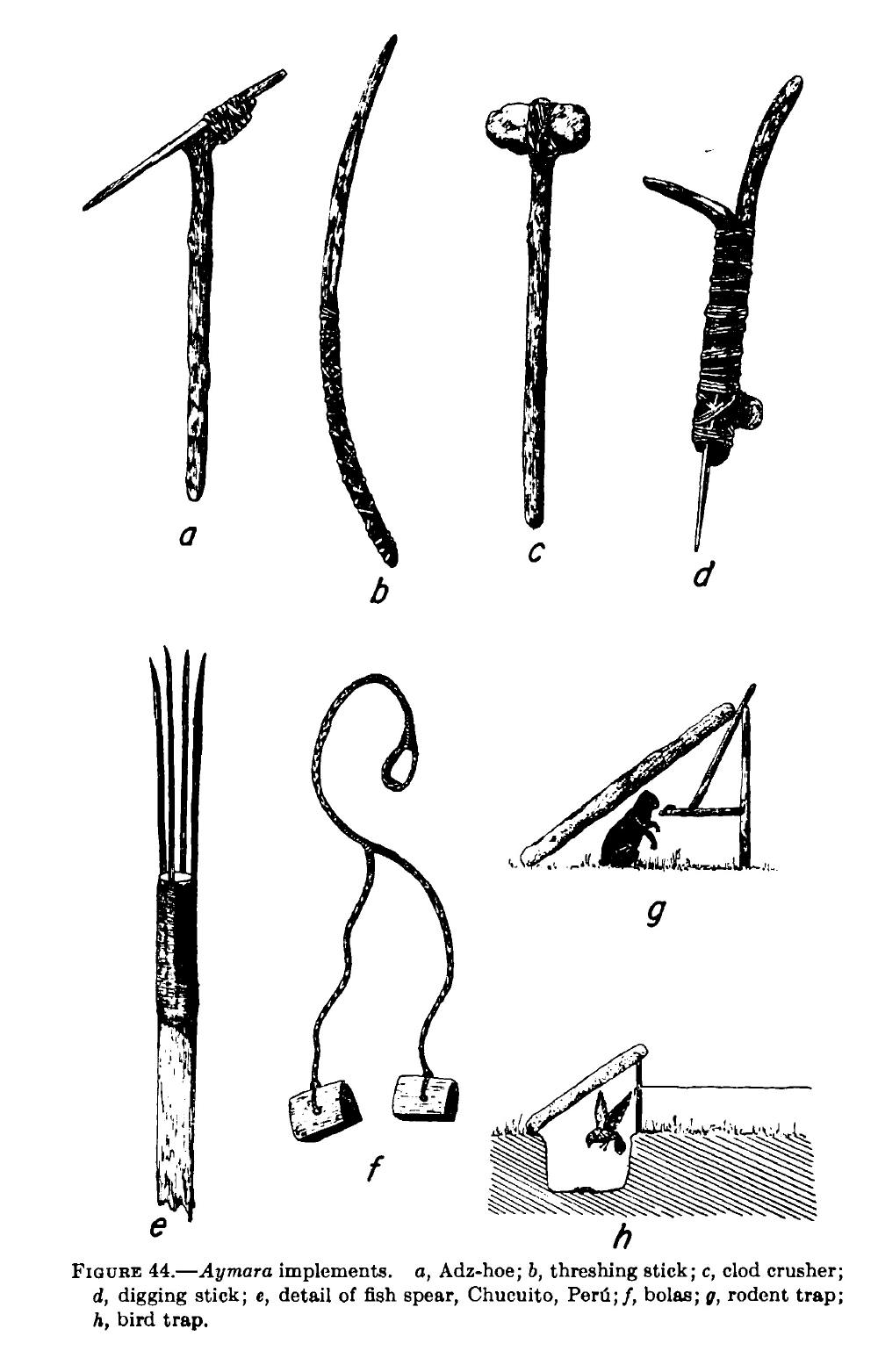 History of the Arawak Amerindians Taino religion