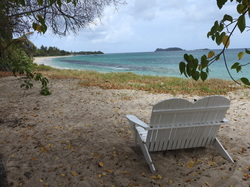 Waiting at the Animal hospital on Carriacou Paradise Beach.