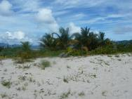 On Sandy Island Carriacou.