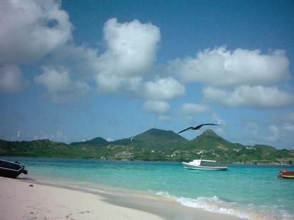 Cassada Bay seen from the beach of White Island.