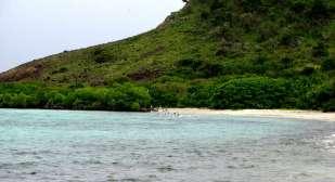 Bay and beach of Saline Island.
