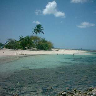 In front of Paradise beach is sandy island.
